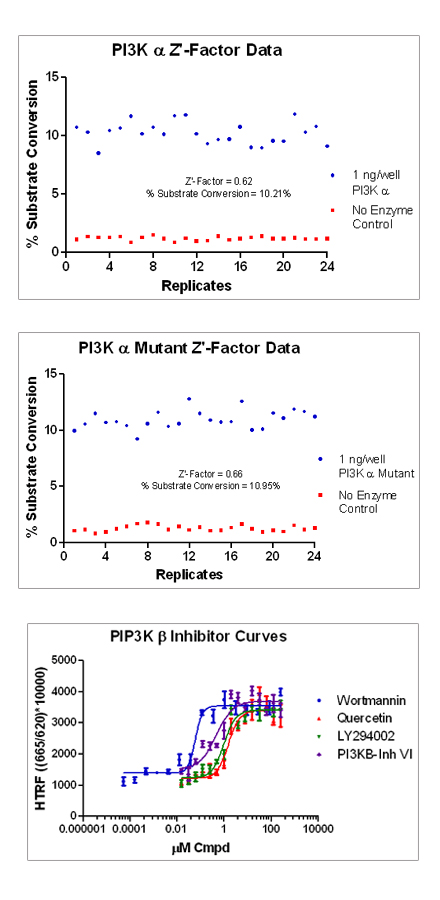 Figure 7. Representative inhibition curves for PI3-Kinases with test compounds.  PI3-Kinase β curves shown.