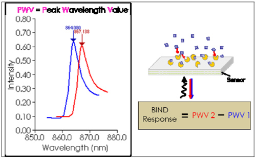 BIND Response is a differential signal associated with a binding event.