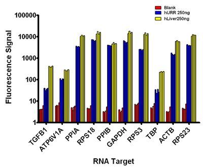 Expression of RNA Species in Different RNA Samples using 384-well Reaction Plates.