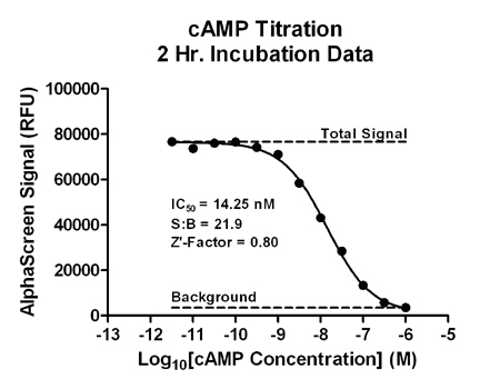 AlphaScreen® cAMP Assay 2 Hour Incubation Data