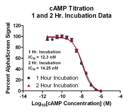 Normalization of AlphaScreen® cAMP Assay 1 and 2 Hour Incubation Data
