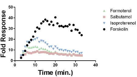 Kinetic data depicting fold response of GloSensor™ cAMP HEK293/L9-2 Cell Line when subjected to the indicated compound.