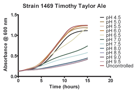 Effect of pH on the growth of strain 1469 Timothy Taylor ale yeast.