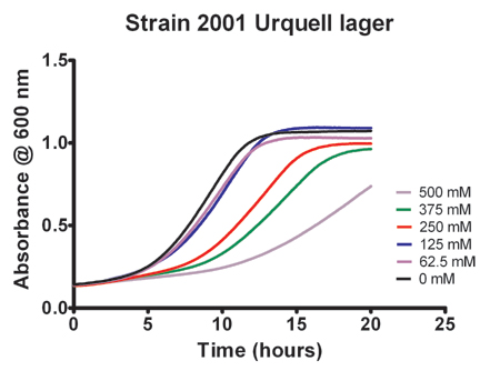 Effect of Sodium Chloride on the Growth of strain 2001 Urquell lager yeast.