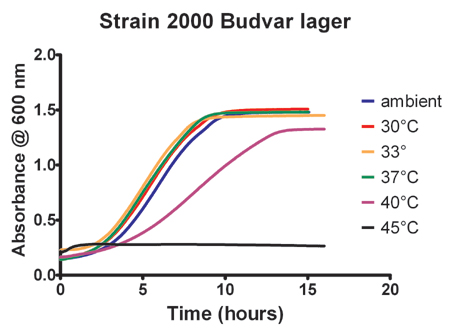 Effect of Temperature on the growth of strain 2000 Budvar lager yeast.