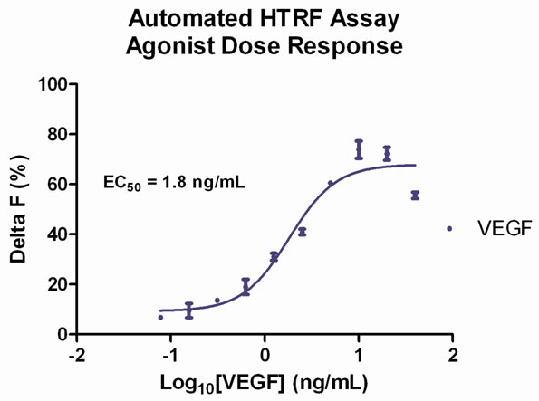 VEGF Agonist Validation.