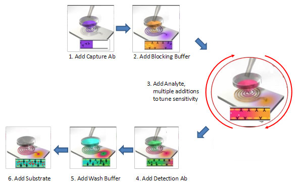 Optimiser workflow – the steps of the workflow mirror typical ELISA workflows.