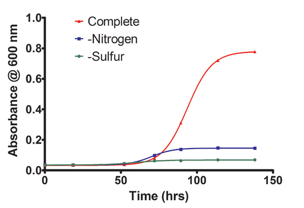 Comparison of A600 growth curves of Chlorella vulgaris grown in complete TAP media or TAP deficient in nitrogen or sulfur.