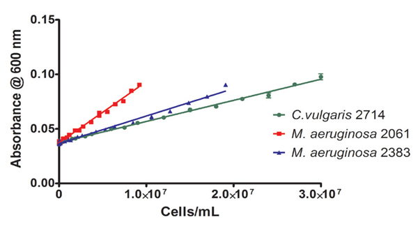 Calibration curve for algae strains grown in BG11 media based on measuring absorbance induced by light scattering.