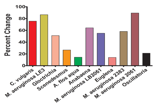 Effect of nitrogen deprivation on various microalgal strains. Data is expressed as the percent change of the A600 normalized Nile red fluorescent signal after 70 hours.