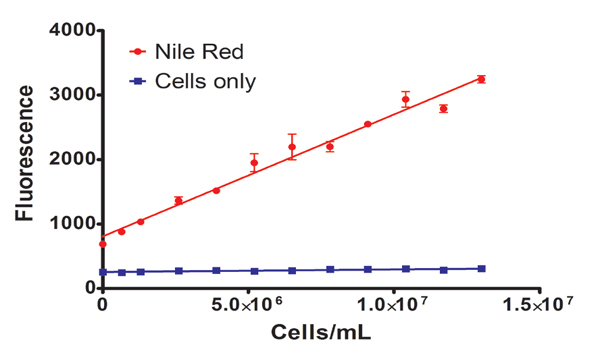Fluorescence of Nile red stained C. vulgaris cell dilutions