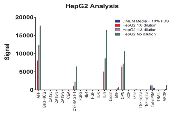 4. HepG2 cell line biomarker characterization
