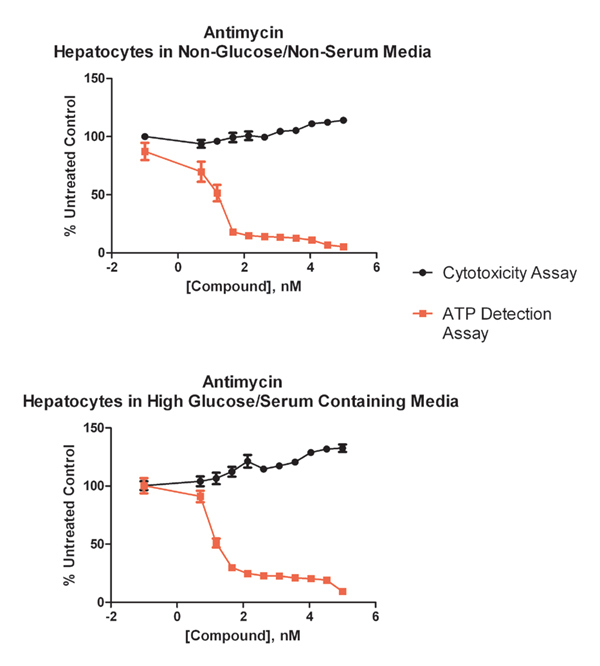Primary hepatocytes assayed in either high glucose or no glucose in the presence of increasing concentrations of the mitotoxicant antimycin show significant decrease in ATP production as expected