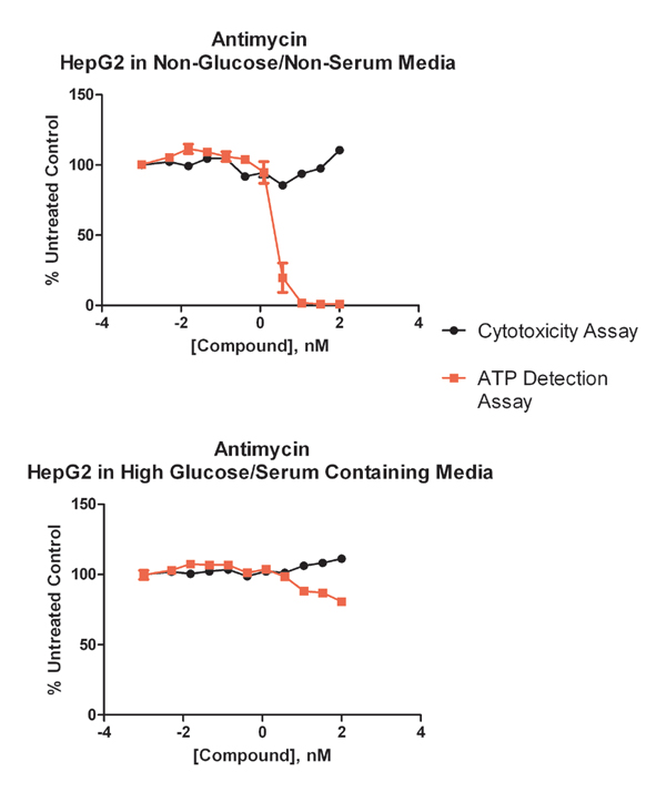Cancerous hepatocytes (HepG2) grown in no glucose media display a similar ATP decrease, while those grown in high glucose media have very little ATP decrease, thus representative of the Crabtree Effect.