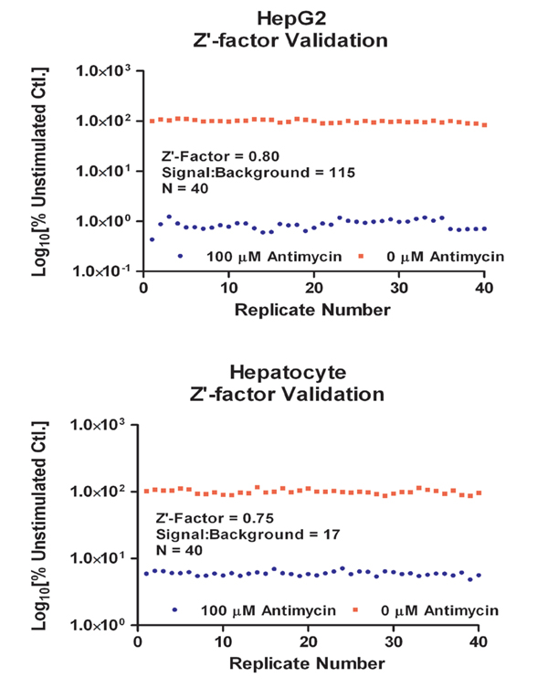 Z'-factor validation data of the automated system, showing excellent assay results.