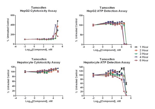 Cytotoxicity and ATP detection tests using tamoxifen, incubated at one to six hours, with both cell models, shows variable results.