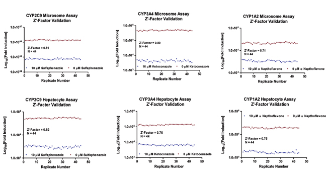Z'-Factor validation data for the human liver microsome- and suspension hepatocyte-based assays.