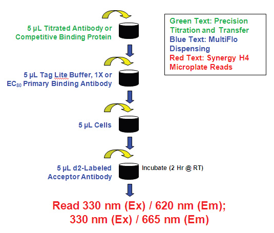 Titration and transfer of antibody or competitive binding proteins initially accomplished.
