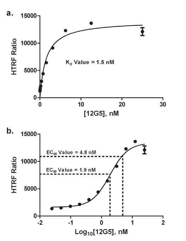 A 12G5 dose-response curve was created using a 1:2 dilution scheme, starting at 25 nM.