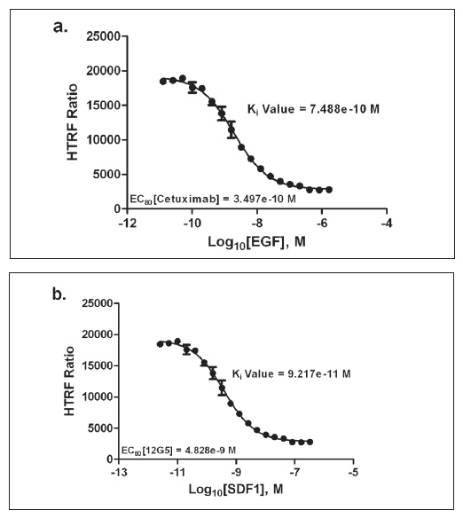 a. An EGF dose-response curve was created using a 1:2 dilution scheme, starting at 1.67 μM. Cetuximab was added at the EC80 concentration previously determined. b. An SDF1 dose-response curve was created using a 1:2 dilution scheme, starting at 0.33 μM. 12G5 was added at the EC80 concentration previously determined.