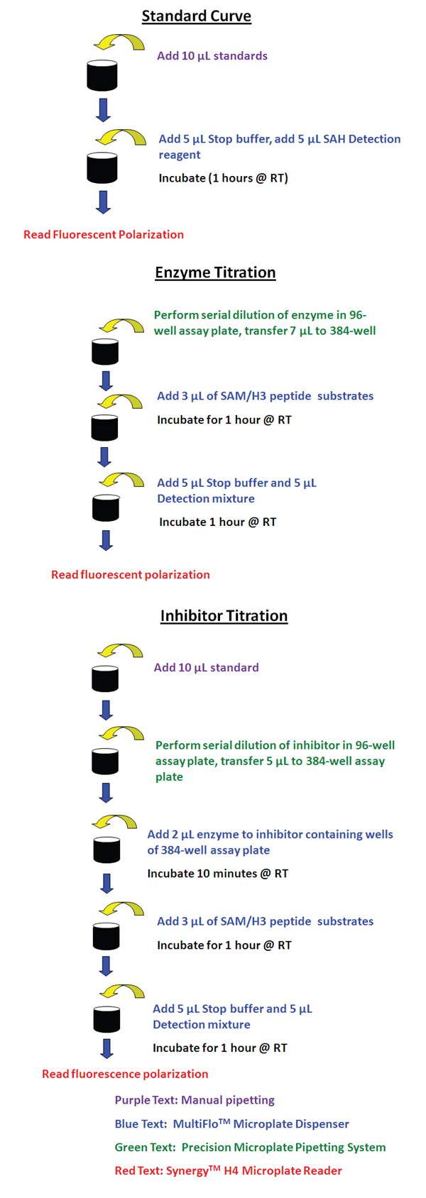 Transcreener EPIGEN Methyltransferase Assay workflow.
