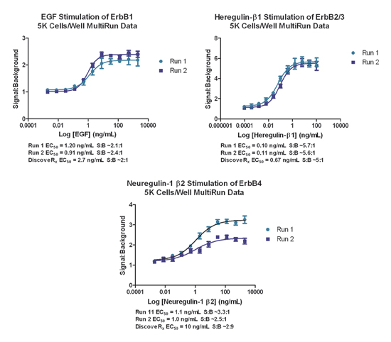 Multi-Run Data. Dose response curves and determined EC50 and S:B values for n=2 runs with each receptor assay.