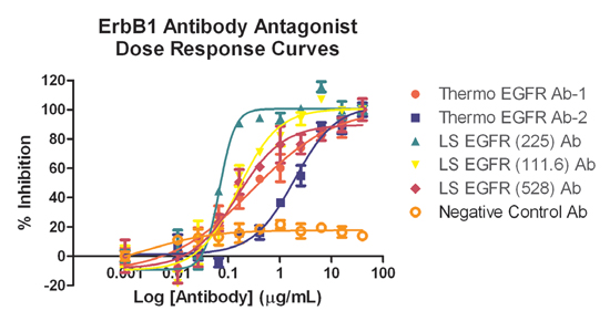 Blocking Antibody Inhibition. Dose response curves showing inhibition of EGF binding to EGFR across multiple antibody concentrations.