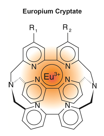 Europium (III) cryptate structure typically consists of a tris bipyridine macrocycle in which the lanthanide ion is tightly embedded.