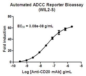 Automated ADCC Reporter Bioassay validation using WIL2-S target cells.
