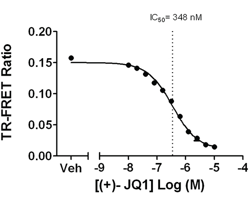 BRD4 Bromodomain 1 inhibition curve using (+)-JQ1.