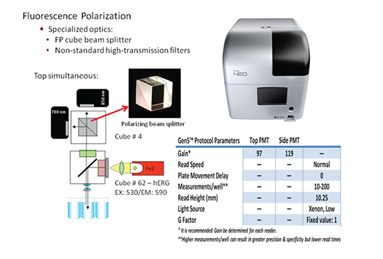 Synergy™ Neo Fluorescence Polarization Detection Principle and hERG Assay Parameters.