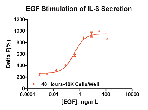 EGF Stimulation of IL-6 Secretion. IL-6 secretion stimulation curve for 48 hour EGF incubation with SKOV-3 cells.