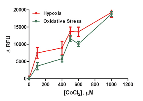 Evaluation of CoCl2 dose response using 2 hour incubation for (A) Hypoxia and (B) Oxidative Stress assays.
