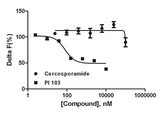 Compound inhibition of total elF4E protein levels.