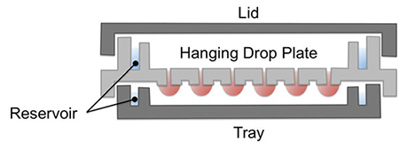 Hanging Drop Plate Assembly