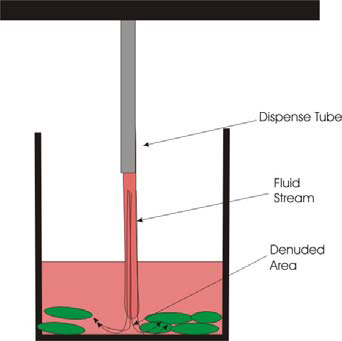 Schematic Depiction of Fluid Flow with Straight Dispenser Tips.