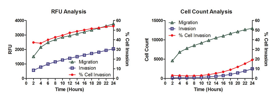 % Cell Invasion Determination.