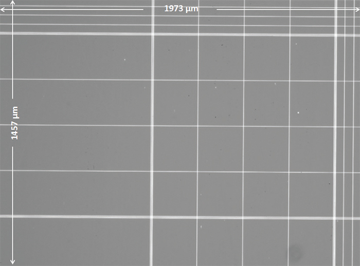 4x Brightfield Image of Hemocytometer 16-Square Grid andSurrounding Area.