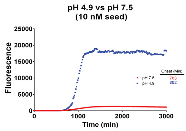 Effect of pH on α-Synuclein fibril formation.