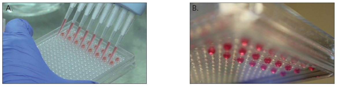 Slit-type micropatterned microplates containing cell network (Image courtesy of Kuraray Co., Ltd.)