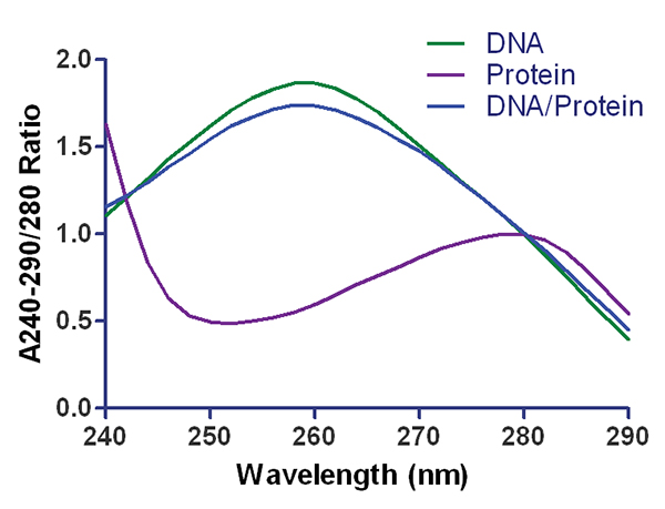 Typical absorbance spectrum for DNA, RNA,and protein, indicating peak at about 260 nm for nucleic acids and 280 nm for protein.