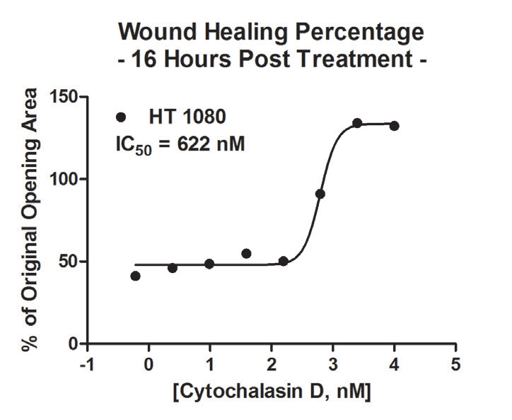 HT-1080 post incubation wound healing IC50 calculation.