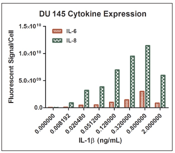 IL-6 and IL-8 mRNA expression in DU 145 cells following IL-1β stimulation.