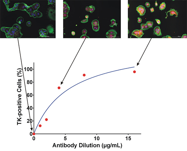 Effect of Primary Antibody Concentration on Duolink signal.
