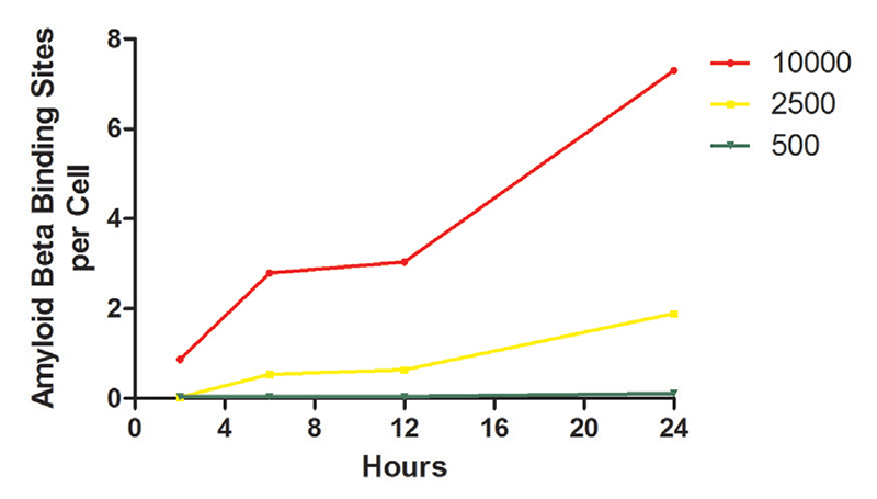 Time and dose dependent β-amyloid peptide binding to SHSY5Y cells.