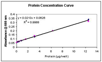 determination of a standard curve for bovine serum albumin