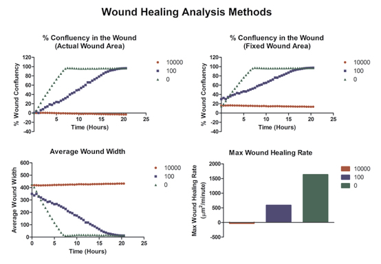 Variable determinations of wound healing and cell migration.