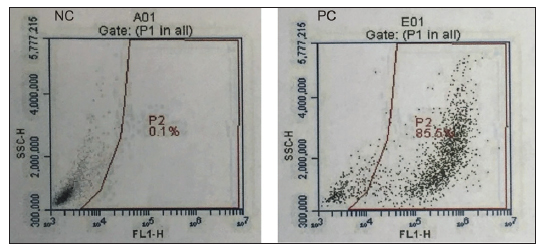 Comparison of flow cytometer scatter-plot analysis of HIVGFP infected and non-infected HeLa cells