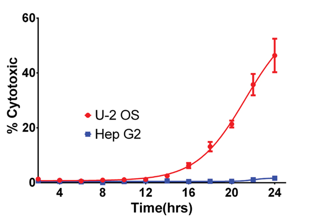 Comparison of Oridonin Cytotoxicity on U-2 OS and HepG2 cells