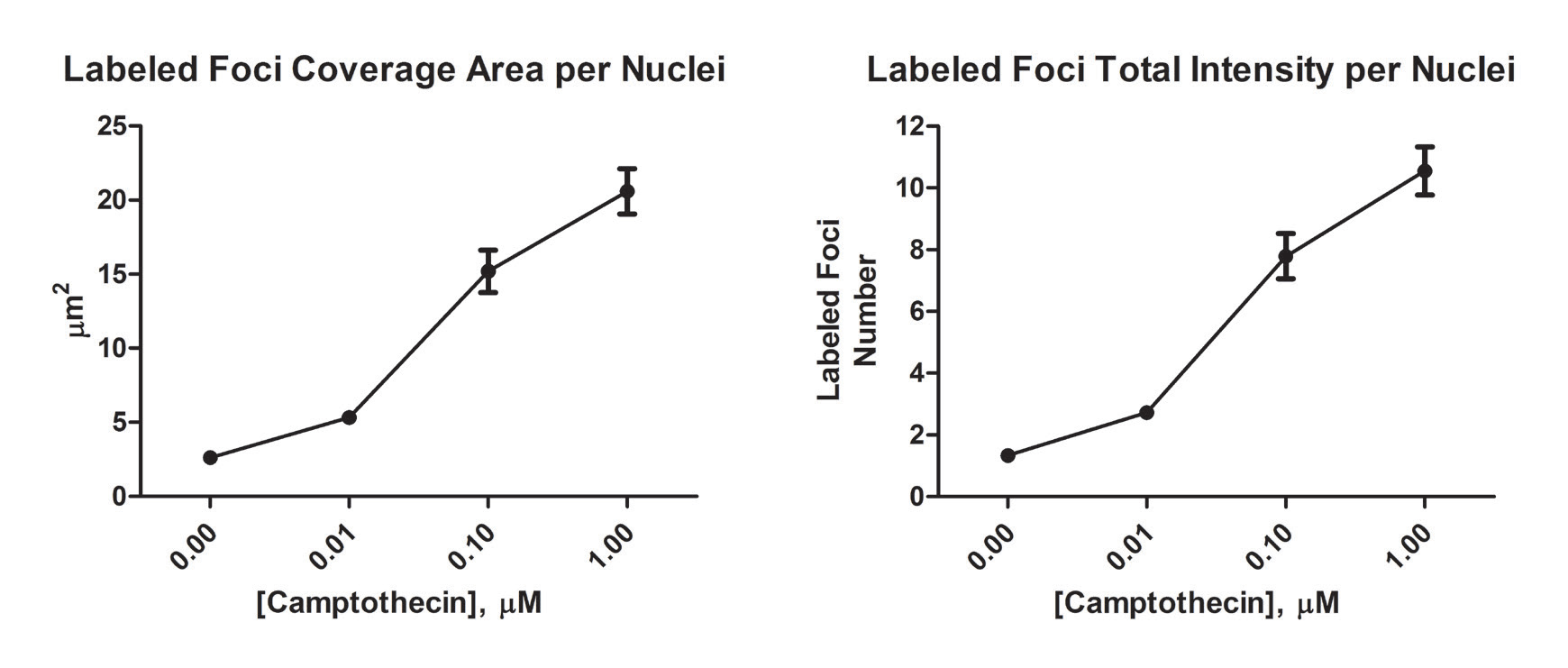 Labeled foci analyses using U251 cells exposed to various camptothecin concentrations
